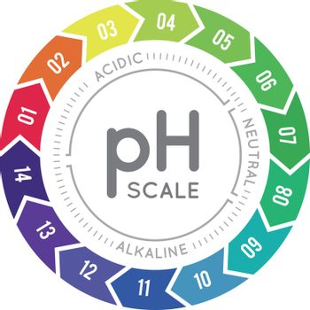pH meter for measuring acid alkaline balance. Vector infographics in the circle form with pH scale on white background