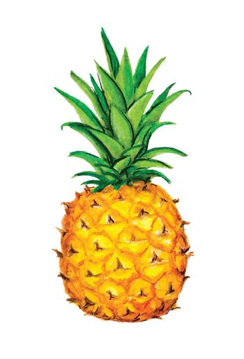 Pineapple icon. Tropical exotic fruit shape pattern. Pineapple hand drawn watercolor vector graphics