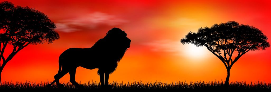 Silhouette of an African lion. Lion on the background of the sun and trees. African wild landscape. Sunset. Wildlife of Africa.