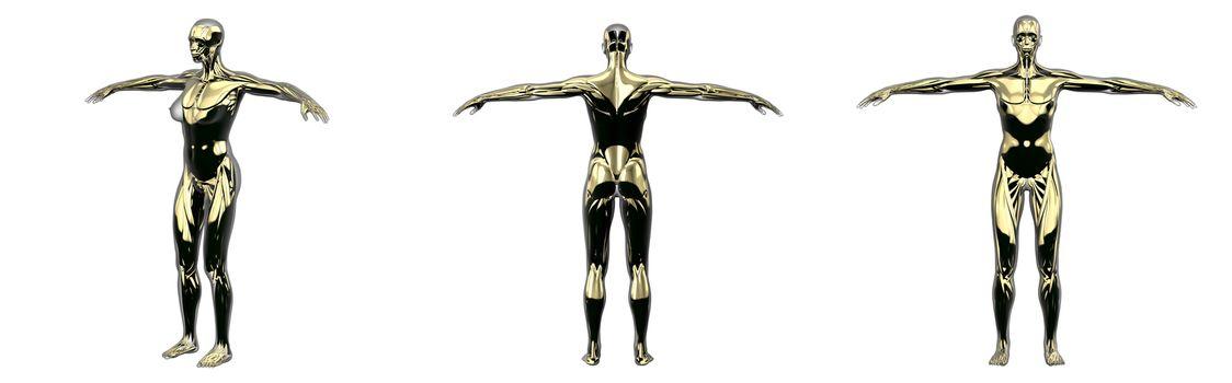 3d rendering illustration of gold human