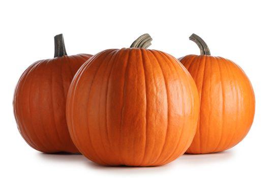 Huge pumpkins on white background