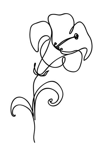 Lily flower. Continuous line art drawing. Vector logo illustration