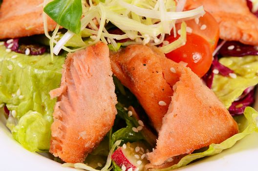 Salad from seafood and a salmon close up