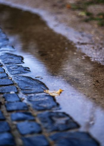 Cobblestones and a puddle of water with a fallen leaf inside.