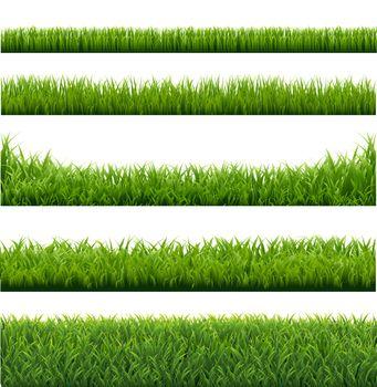 Green Grass Borders Set Background