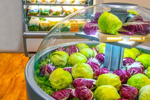 vegetable market refrigerator lettuce salad at supermarket .