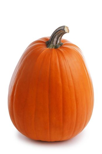 One perfect pumpkin isolated on white background