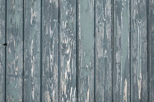 Background photo of weathered gray old green wooden laths full screen display