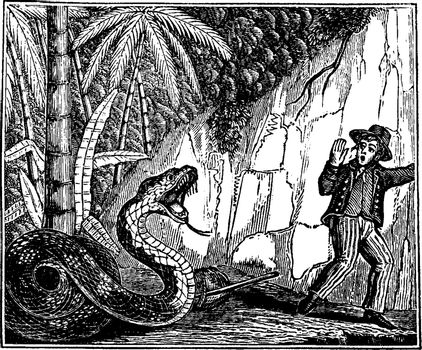 Escape from the Serpent of Ceylon, vintage illustration.