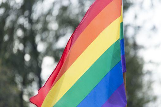 Rainbow Flag waving in the wind.