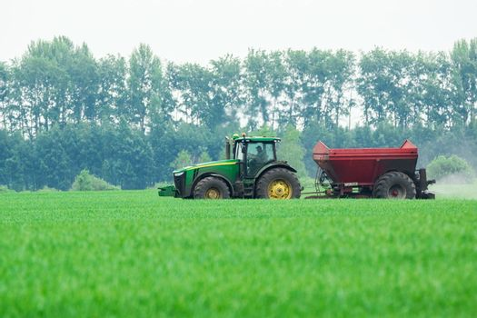 Tractor in the field mows the green grass