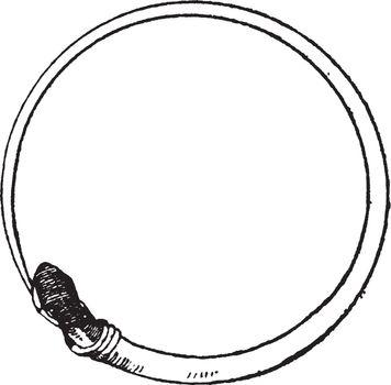 Antique Serpent Bracelet is in the form of a viper, vintage engr