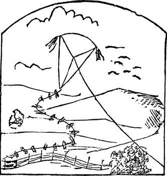 Kite vintage illustration.