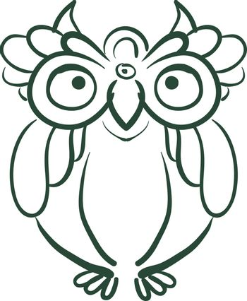 A sketch of an owl with round eyes vector color drawing or illustration