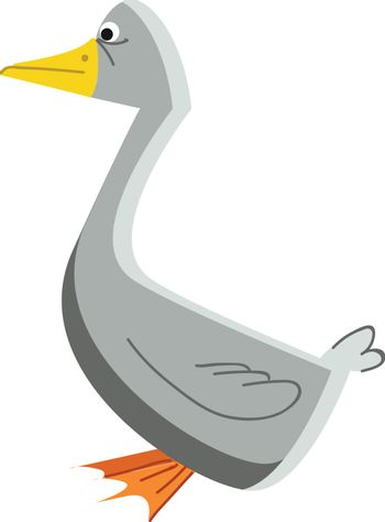 A grey color waterfowl bird with a yellow sharp beak and webbed-