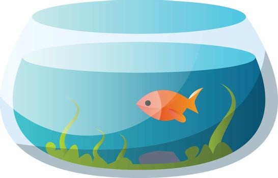 Round fishbowl with one goldfish vector illustration on a white