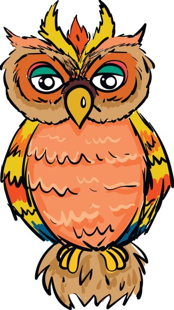 Colorfull owl illustration vector on white background