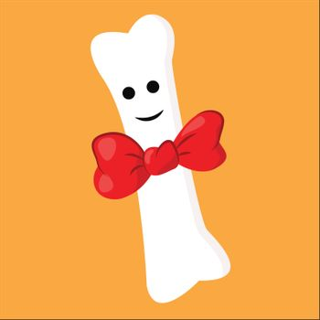 Portrait of a white bone wearing a red bowtie vector or color il