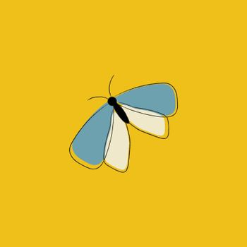 Portrait of a butterfly over yellow background vector or color i