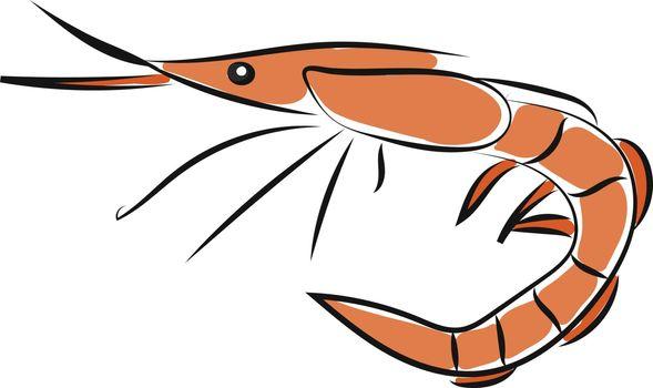 Clipart of an orange-colored shrimp/Sea-creature/Prawn vector or