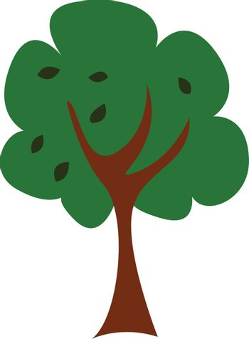 A tree/Woody perennial plant, vector or color illustration.