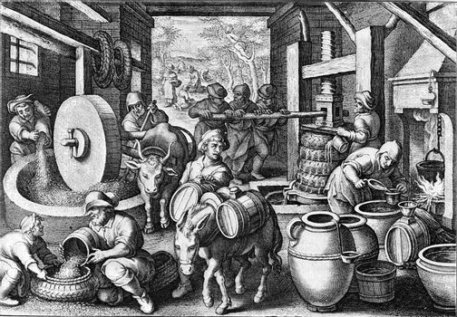 Manufacture of olive oil around the year, vintage engraved illustration. From the Universe and Humanity, 1910.