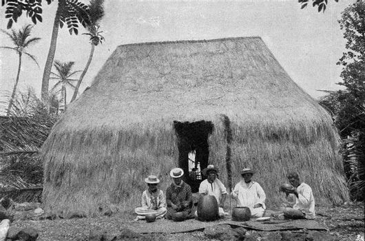 Budding hut of natives of Hawaii, vintage engraved illustration. From the Universe and Humanity, 1910.