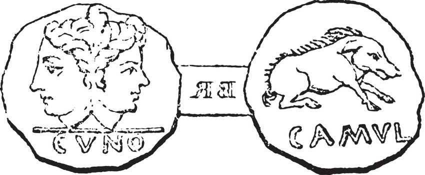 Coin struck under the son of Cunobelinus at Camulodunum (Colches