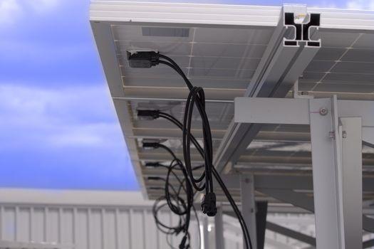 Renewable solar energy (ant view)