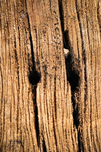 Weathered wooden texture from an old used railway sleeper.
