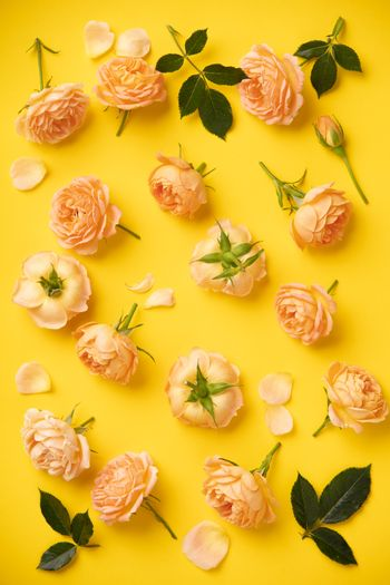 Floral pattern with pink roses and leaves on yellow background