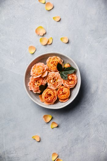 Orange roses floating in water on concrete background, SPA and relaxation concept, flat lay