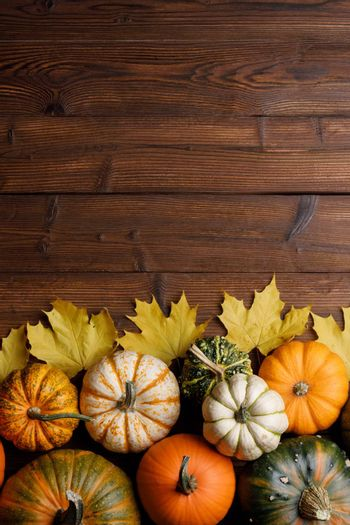 Striped yellow and orange pumpkins and dry maple autumn leaves on wooden background, top view, Halloween concept