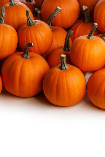 Many orange pumpkins isolated on white background corner composition, Halloween holiday concept