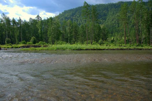 A fragment of a river flowing at the foot of high mountains overgrown with coniferous forest. Altai, Siberia, Russia.