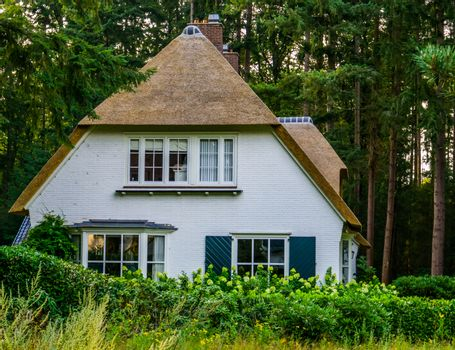 typical dutch house in a forest with a classical thatched roof, Rural home in the netherlands, classic architecture