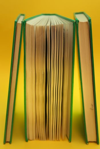Book standing vertically over a yellow background