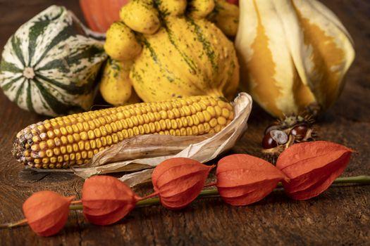 still life of autumn fruits