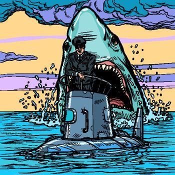 Captain of the submarine. Shark attack