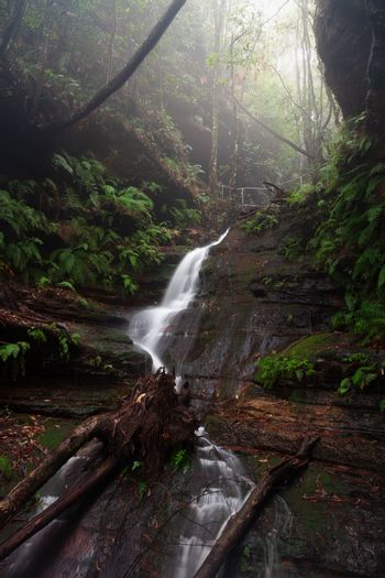 Mountain stream and waterfall in Blue Mountains