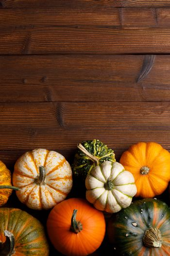 Many orange pumpkins on dark wooden background, Halloween concept, top view with copy space