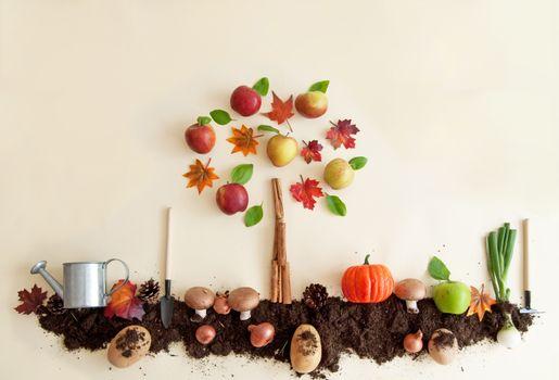 Autumn fruit and vegetable garden