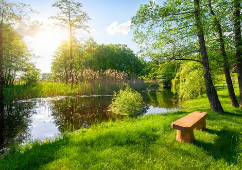 Wooden bench near river in the summer park