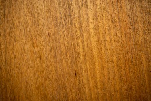 Closeup shot of mango wood texture