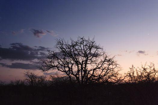 Sunset over the okavango delta in Botswana