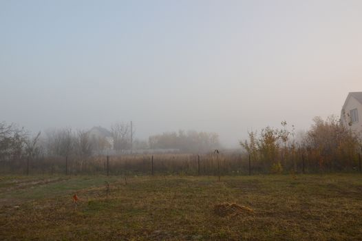 Morning fog and haze in the forest and village