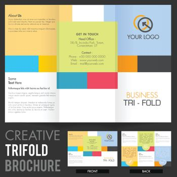 Business Tri-Fold Brochure, Template design.