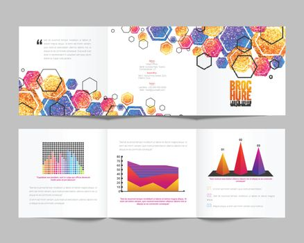 Tri-Fold Brochure design for your Business.