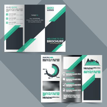 Two Page, Tri-Fold Brochure design for Business.