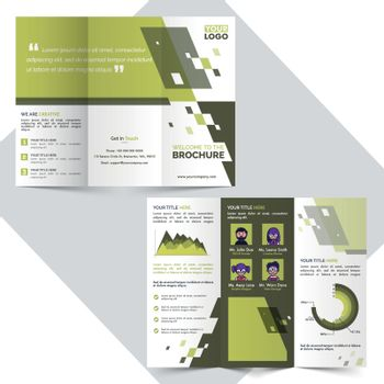 Two Page, Tri-Fold Brochure for Business.